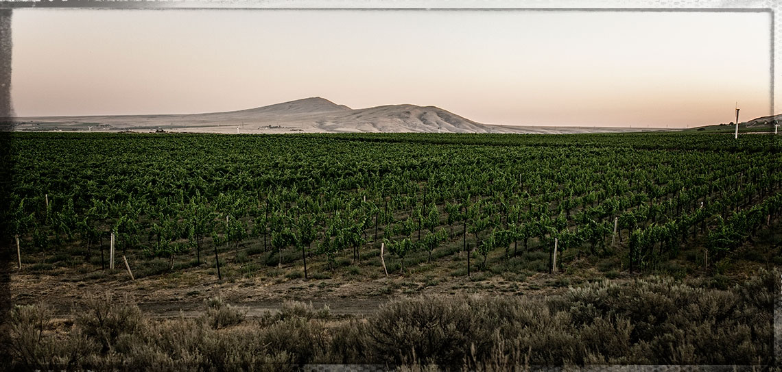 http://Red%20Mountain%20Vineyard%20-%2010,000%20Hours%20Wines